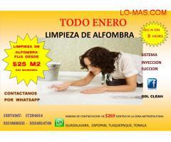 LIMPIEZA DE ALFOMBRAS.