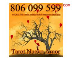 tarot numeros gabinete barato 806 099 599