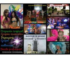 orquestas en fusagasuga colombia 3138120280
