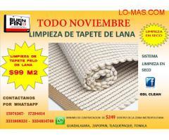 LIMPIEZA DE TAPETE DE LANA