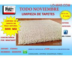 LIMPIEZA DE TAPETE PELO NATURAL